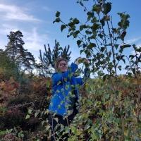 SNTV Surrey Hills 2018-10 32