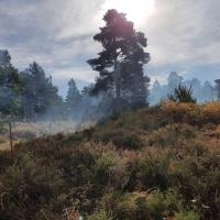 SNTV Surrey Hills 2018-10 35